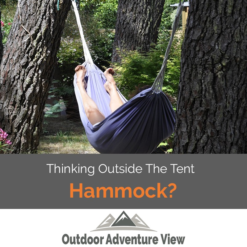 a choosing of hammocking camping trees hammock worst best the species for hanging tree